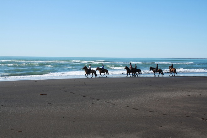 Black Beach Riding Tour